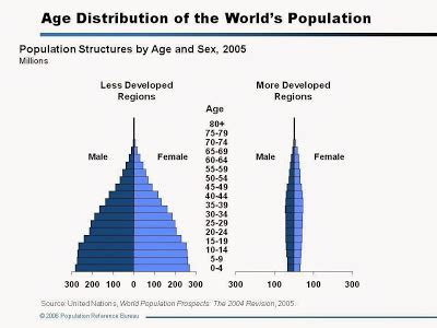 What are the Advantages and disadvantages of population